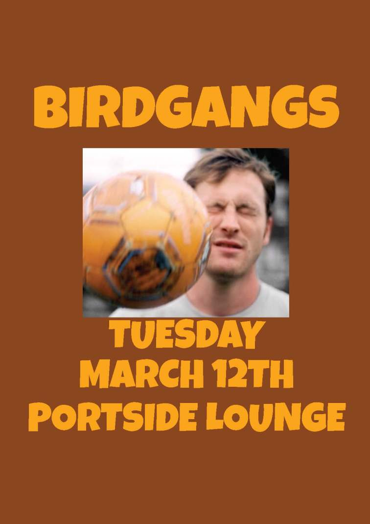 Bird gang.jpg